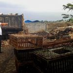 Camat Kecamatan Simpang Empat Kabupaten Asahan Armansyah ketika menunjuk lokasi pembuangan sampah pedagang, di Kecamatan Simpang Empat Kabupaten Asahan