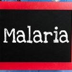 Penyakit Malaria - tobasatu