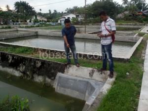 Rehab kolam ikan milik Diskanla ini menelan angaran sebesar Rp181 juta. (tobasatu.com).