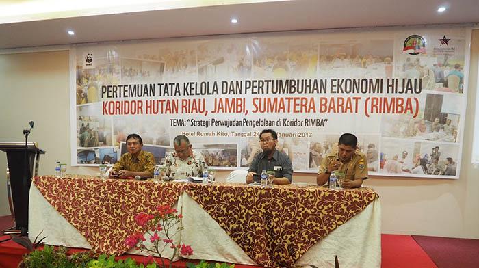 40 Persen Luas Pulau Sumatera Dipertahankan untuk Kawasan Hutan