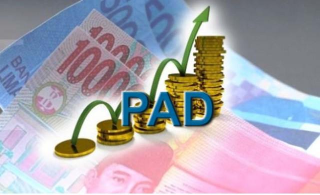 Pendapatan Asli Daerah PAD